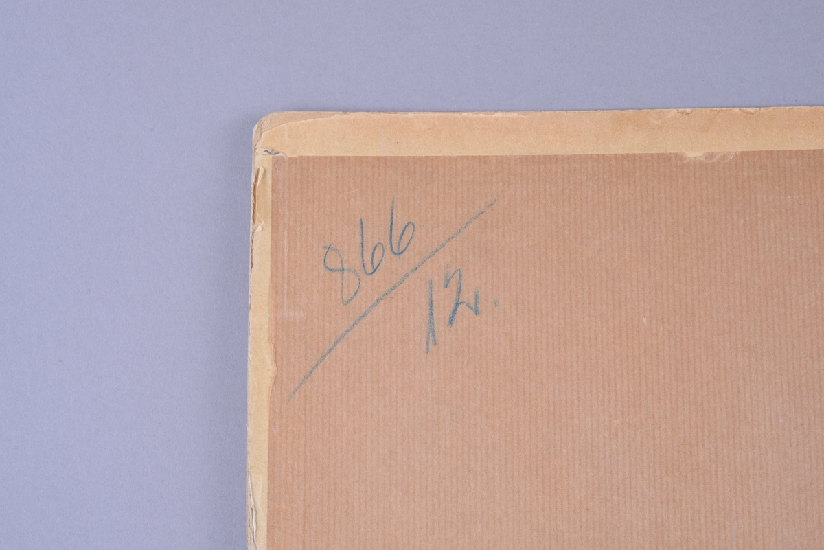 Rektangulær papplate, med et fargetrykt papir limt på. Metallbeslag med krok til oppheng. Øverst på midten av plansjen er det to hull med metallringer. I øvre venstre hjørne på plansjen er det en påskrift i svart blekk. Nederst under motivet er det et lite pålimt papir med trykte svarte bokstaver. På baksiden er det limt på et brunt papir med påskrift i øvre venstre hjørne. Motiv: ukjent motiv fra det nye testamentet.