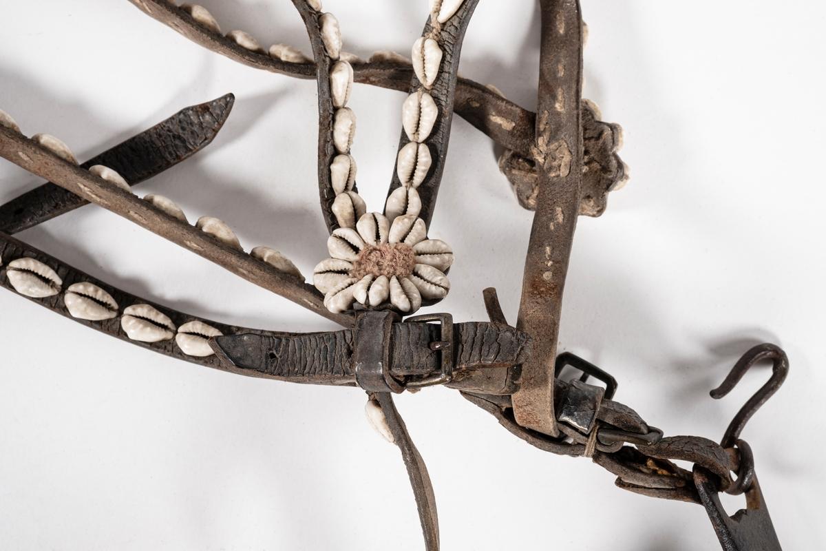 Hodelag til hest med munnbitt og tømmer. Hoelaget er dekoret med kauriskjell. Kauriskjellene er sydd på langs reimene og som rosetter. Munnbittet er leddet stangbitt med hakekjetting og messingknapper på sidene.