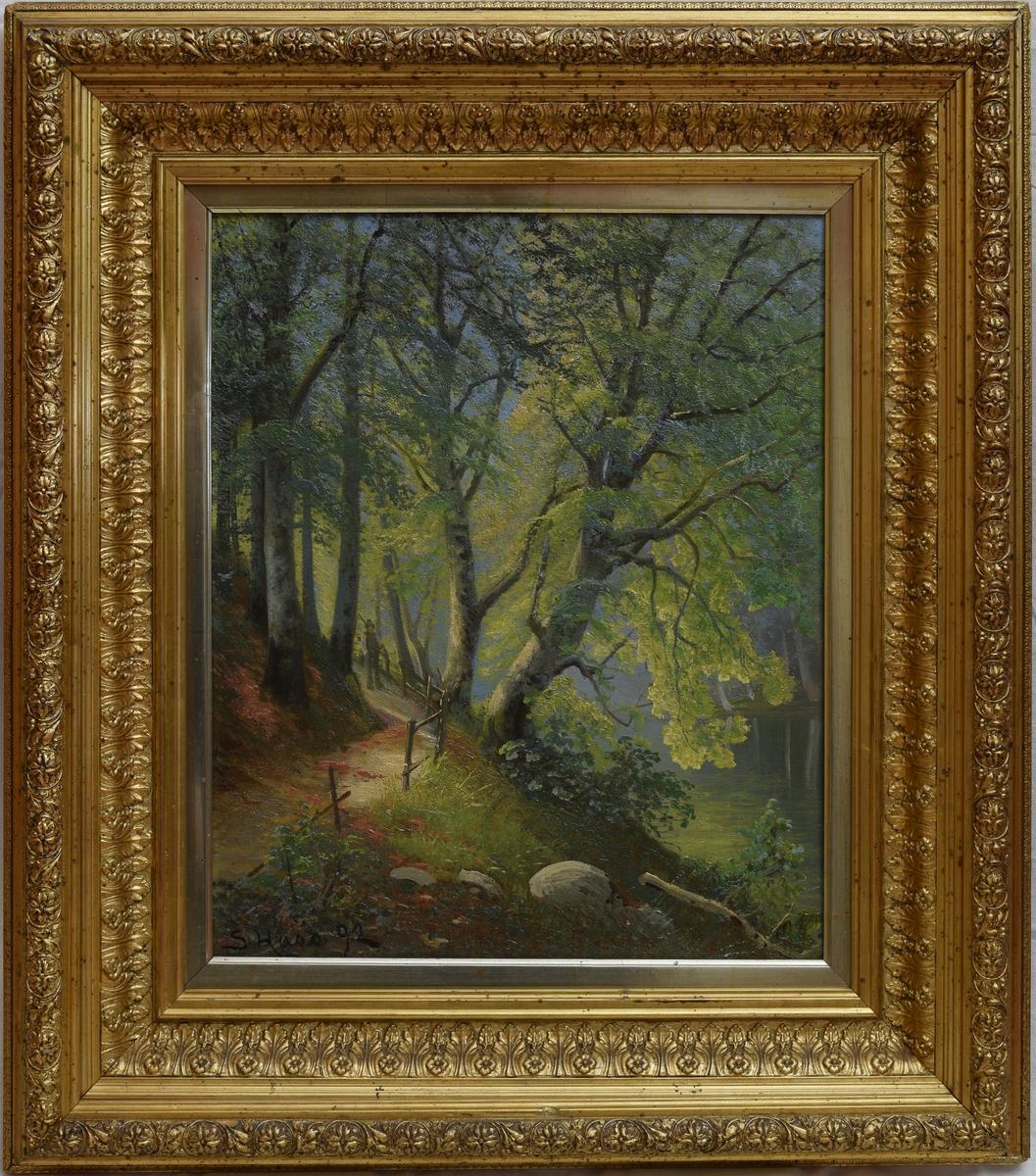 En sti med gjerde svinger rundt en liten kolle på venstre side. Flere trær vokser på kollen og danner mellomgrunnen i bildet. I bakgrunnen skimtes tåke og mer skog. En mann står på stien.