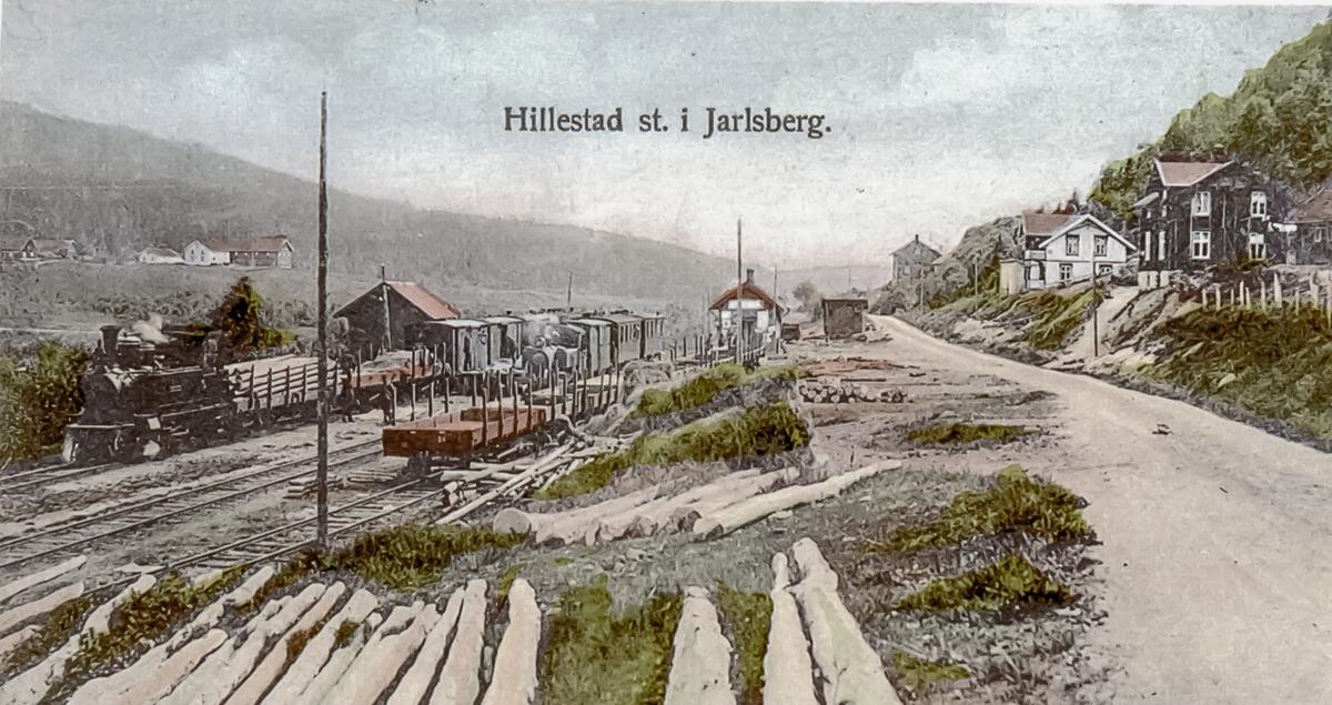 Blandet tog og persontog på Hillestad stasjon, fellesstasjon for Holmestrand-Vittingfossbanen og Tønsberg-Eidsfossbanen. Til venstre HVBs damplok nr. 1 eller 2, til høyr TEBs damplok TØNSBERG eller EIDSFOSS