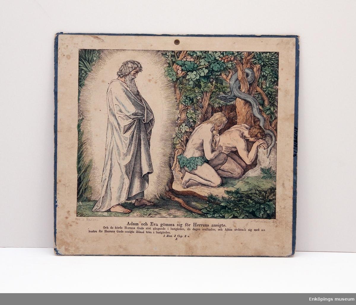 """Skolplansch i ämnet religion. Skolplanschen har bild på båda sidorna. Sida 1: """"Adam och Eva gömma sig för Herrens ansigte"""". Sida 2: """"Utdrifvandet ur paradiset"""".  Skolplanscher användes i de flesta skolämnen under 1900-talet. År 1900 kom en ny läroplan (normalplan) där lektionerna skulle åskådliggöras för eleverna för att de skulle förstå bättre. Detta gjorde att räknestavar, skolplanscher, stora kartor och den svarta tavlan blev viktiga skolredskap."""