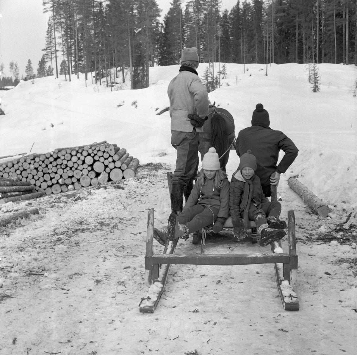 Tømmerkjøring med rede hos Per O. Løberg og sønn. Trysil, Hedmark.