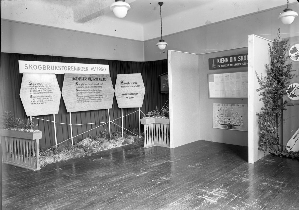 Fra Eidsvoll Bygdeutstilling i 1955,  Stand for Skogbrukforeningen av 1950.