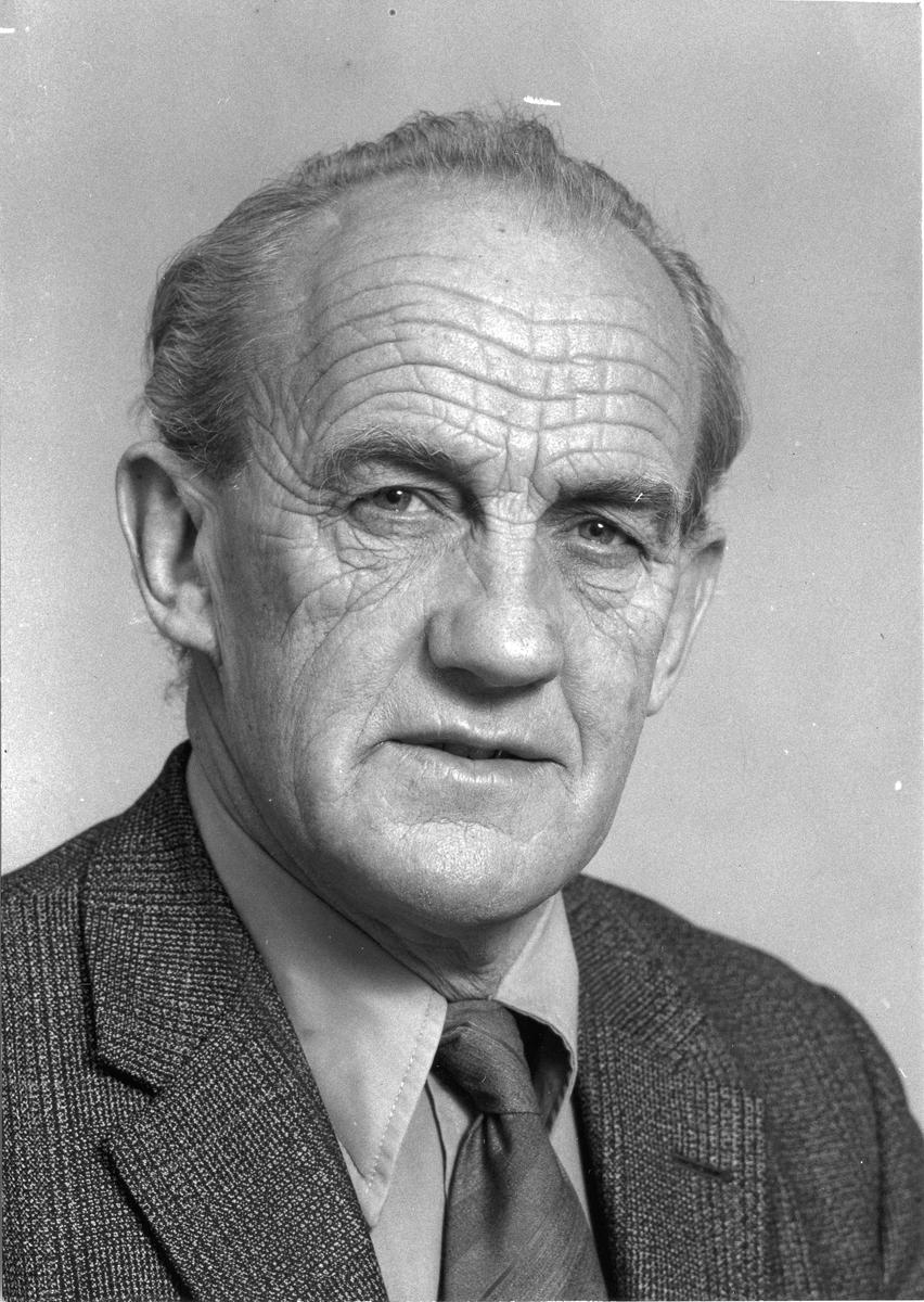 Reidar Habberstad. Varaordfører 1956-67.