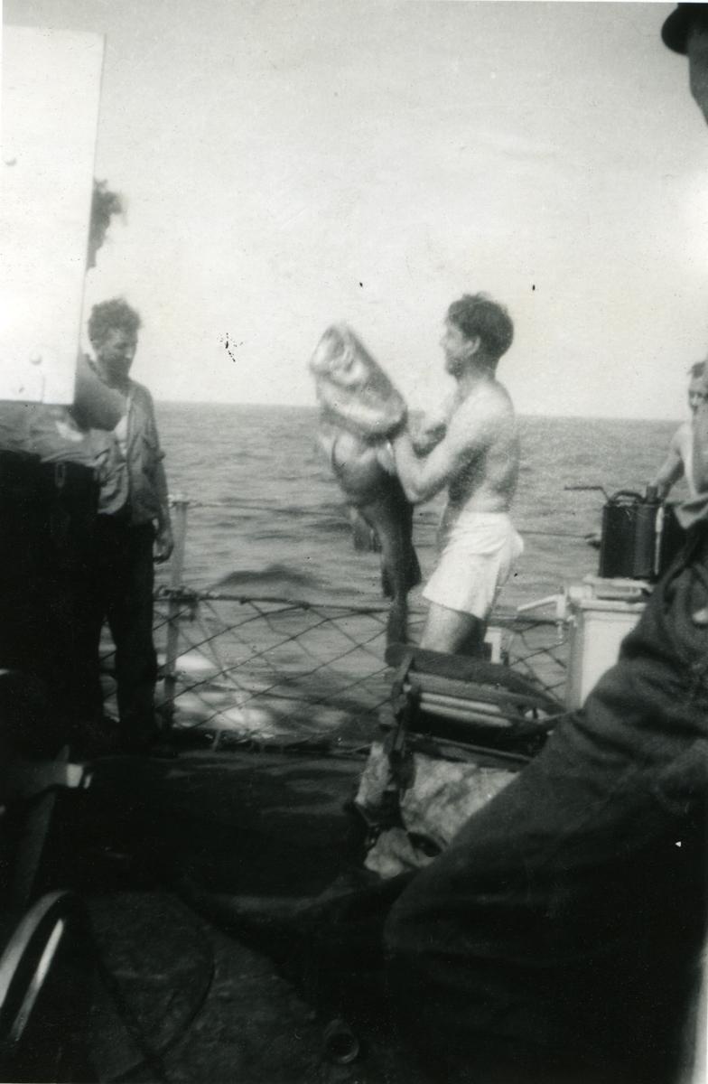 Album Ubåtjager King Haakon VII 1942-1946 Franklin Simonsen med kjempetorsk.