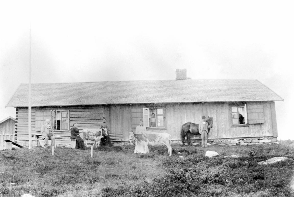 Størhus på Hynna seter, Sjusjøen. Telemarksku og hest. Fra venstre er Christian Berg (1846-1902), Karen Berg (1842-1902), Agnes Berg (1882-1922), Ragnhild Alseth f.1872, Marthinius Berg (1879-1954). Berghøy, Sjusjøen.