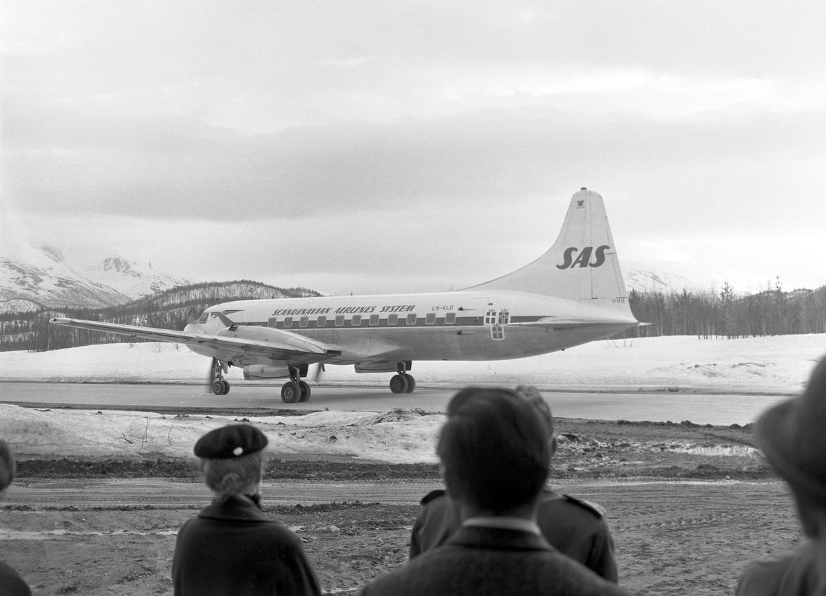 Serie. Et SAS fly står på bakken på Bodø flyplass, mange flydestinasjoner står på et skilt ved Bodø flyplass og en skjære bygger reir på en telefonstolpe. Fotografert april 1963.