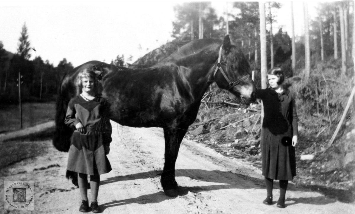 Ruth og Gudny Sundet med hest, Skjeggestad Bjelland.