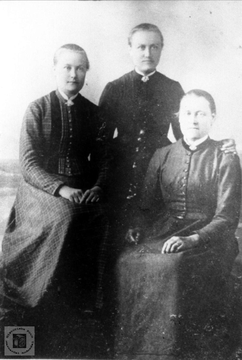 Portrett av Røynesdals jenter fra Bjelland.