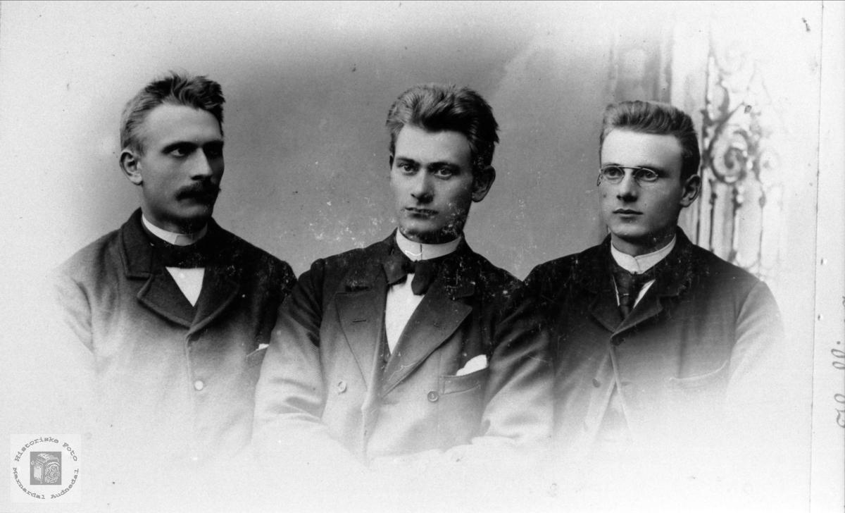 Brødrene Ole, Olaf og Tallak Nome