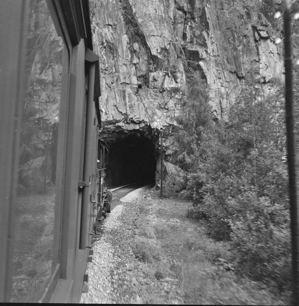 Utsikt fra toget på Numedalsbanen