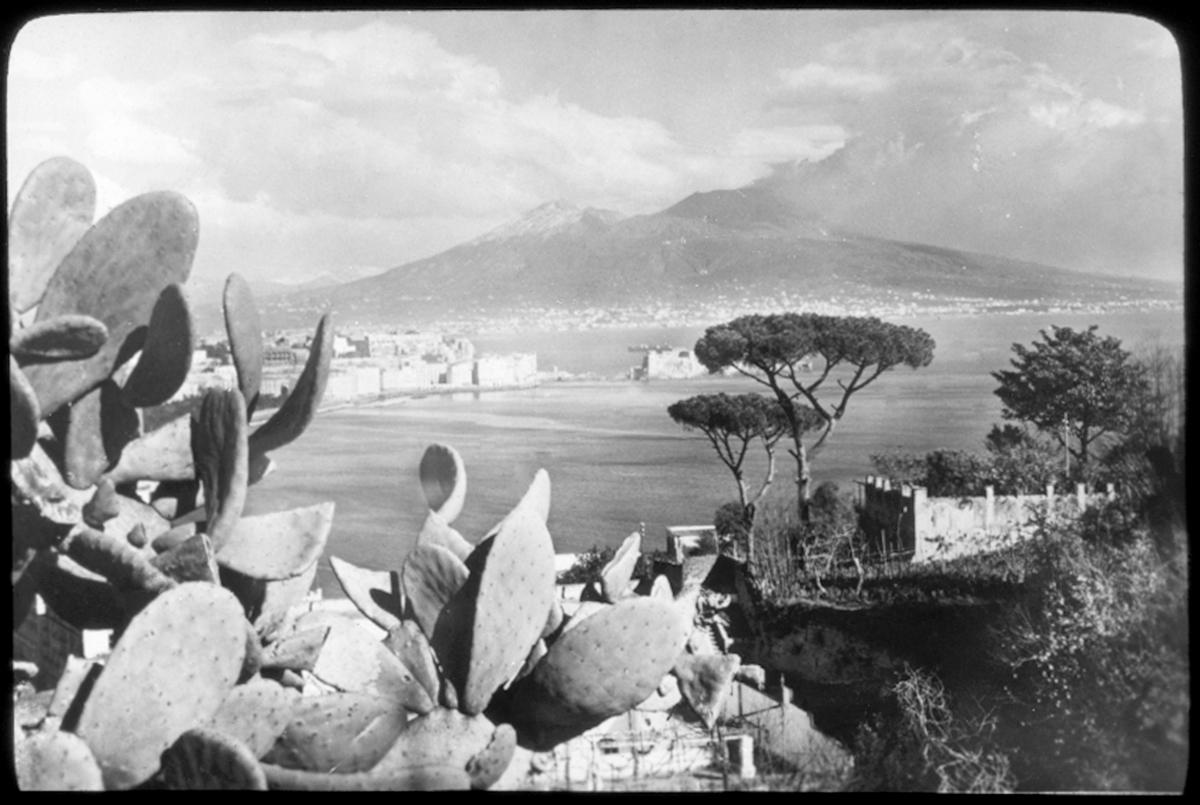 Skioptikonbild från institutionen för fotografi vid Kungliga Tekniska Högskolan. Motiv föreställande utsikt över hav med kaktus i förgrunden och berg i bakgrunden, sannolikt i södra Italien. Bilden är troligen tagen av John Hertzberg under en resa i Europa..