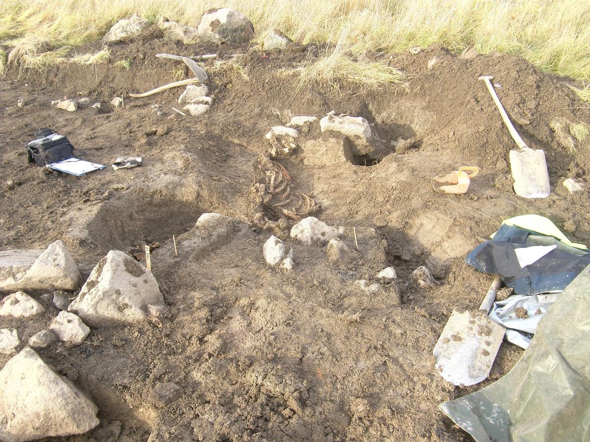 Arkeologisk slutundersökning, A5837 hästgrav, Övergnista, Fyrislund, Uppsala 2010