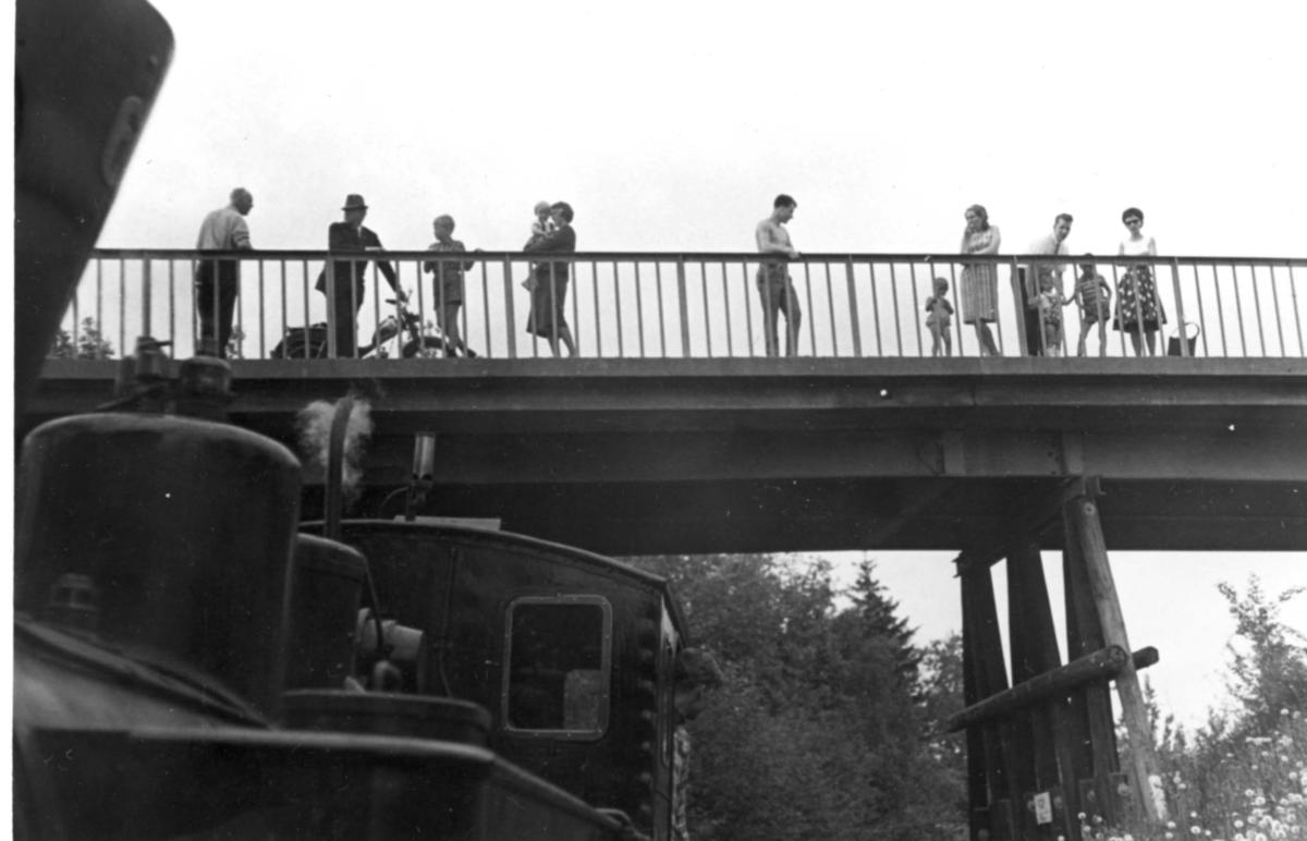 Den gamle riksveibroen over Urskog-Hølandsbanen ved Fyen.