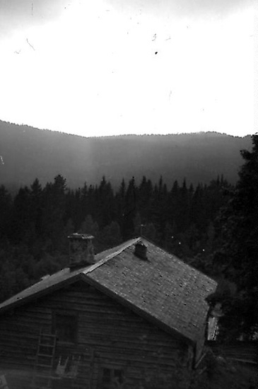 Bildarkivet vid Torsby Finnskogscentrum består till stor del av fotografier från de samlingar som sammanställts av finnbygdsforskarna Sigurd Bograng, Richard Broberg och Bror Finneskog. Fotografierna är tagna under forskningsresor i Värmlands finnskogsbygd under 1900-talet. Samlingarna innehåller också bilder tagna av privatpersoner och som donerats till Finnskogscentrum.  Samtliga bilder är belagda med öppen licens (CC-BY-SA) och är fria att använda om annat ej anges.