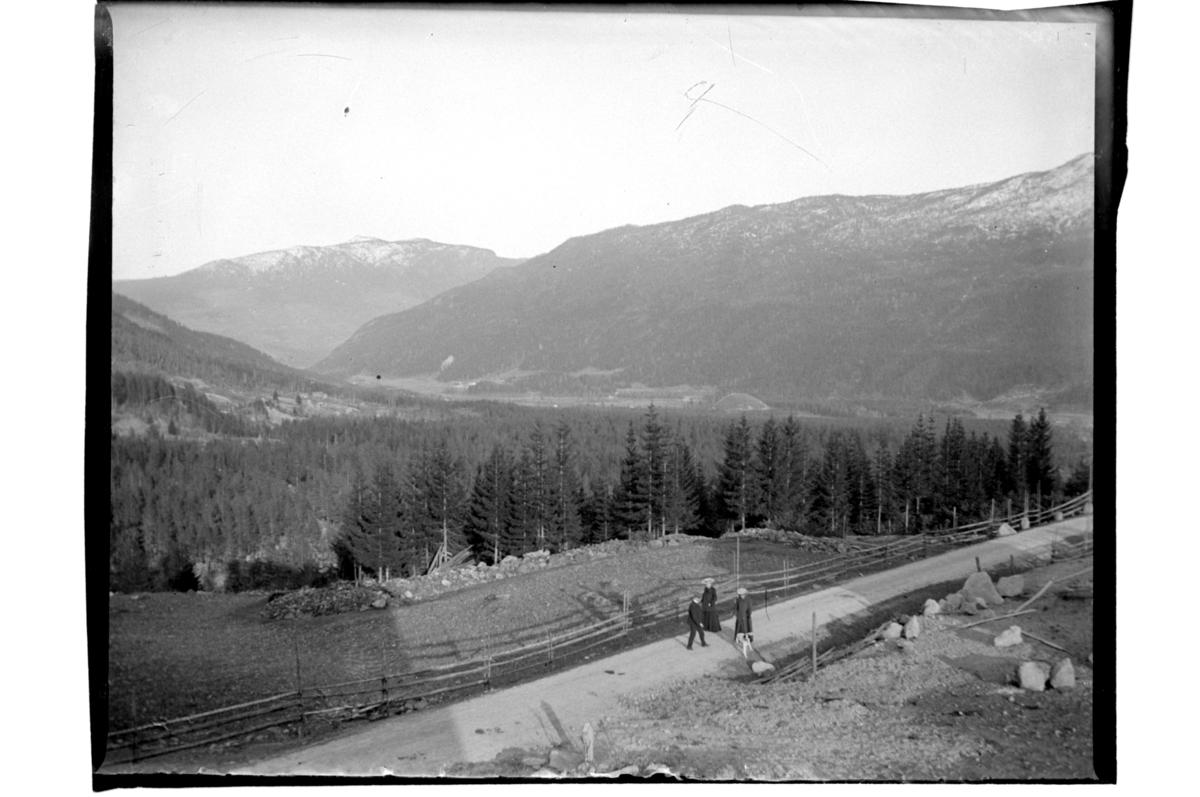 Utsikt over Gol, sett fra Halfdan Sundts veranda. To kvinner og en mann spaserer på grusvei. Antagelig fotografert 1903-04.