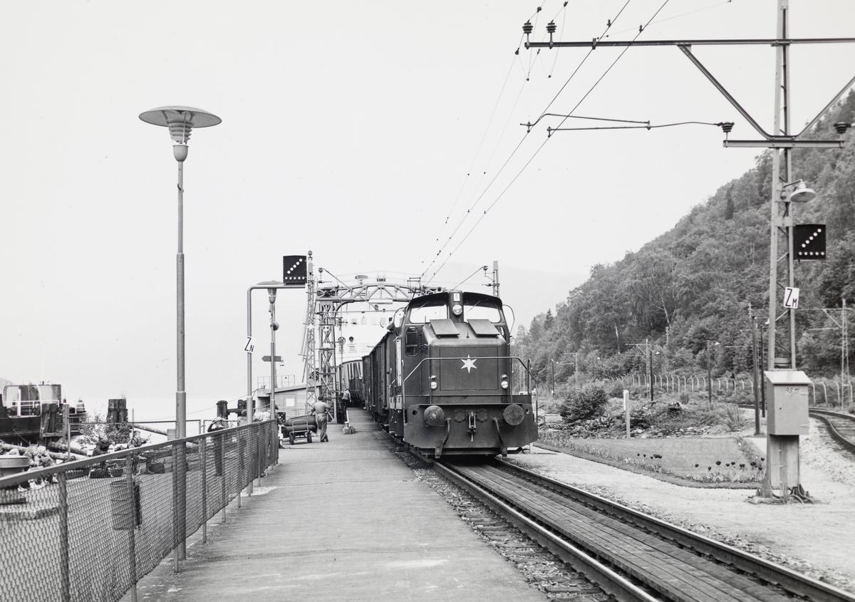 Et av Rjukanbanens  diesellokomotiv type DH 500 Ca skifter på Mæl stasjon på Rjukanbanen. I bakgrunnen MF Storegut.