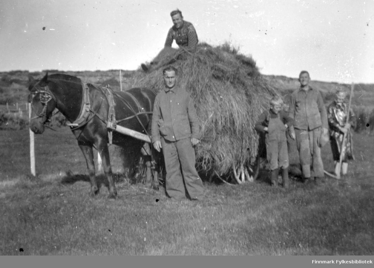 Høykjøring før krigen. Hesten heter Vesla. Familiealbum tilhørende familien Klemetsen. Utlånt av Trygve Klemetsen. Periode: 1930-1960.