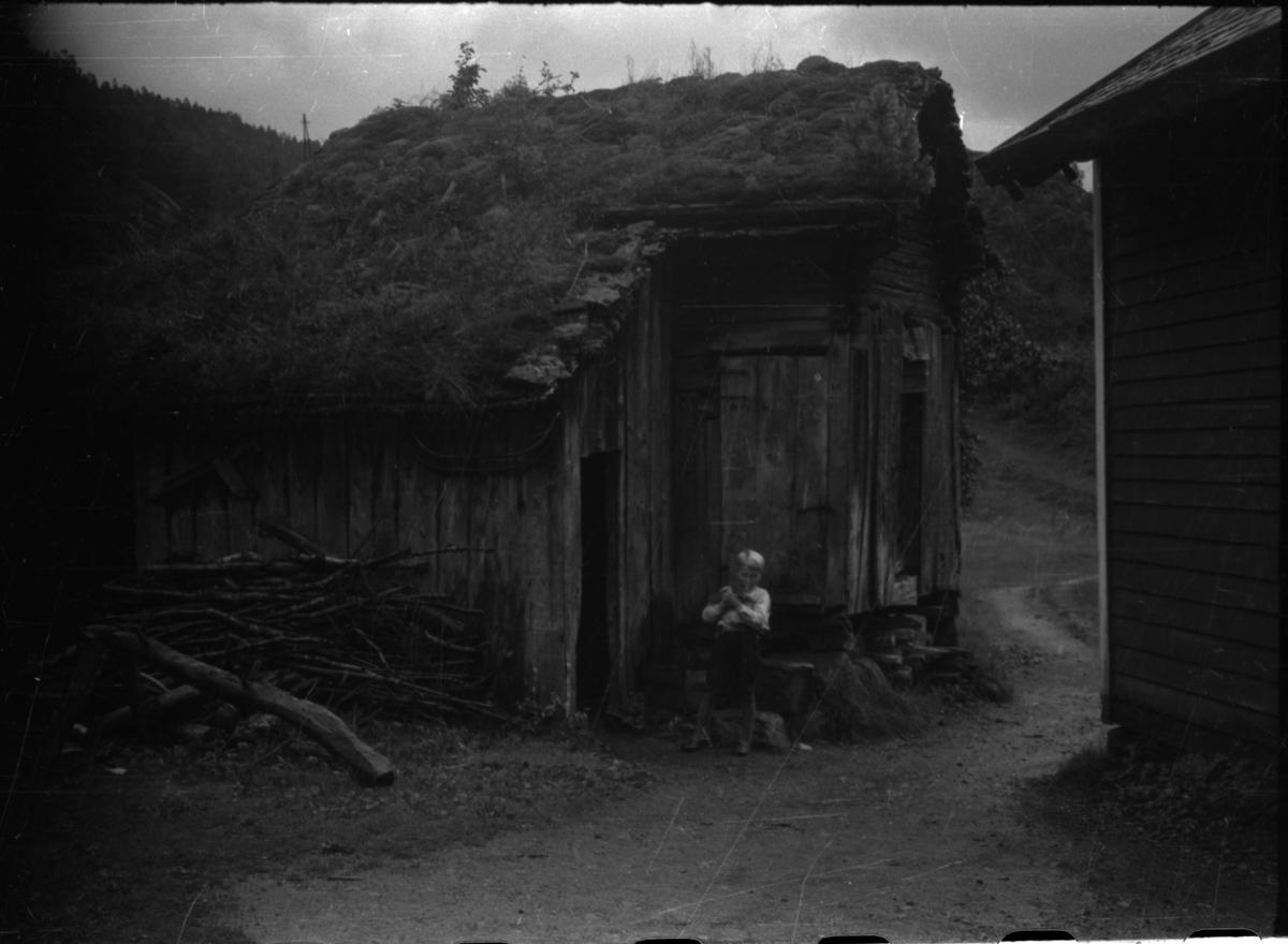 Frida Johannessen sammen med Liva Veka og sønnen, Lars Veka. Lars holder ei kattunge. De står på et tun med eldre hus på Veka i Suldal.