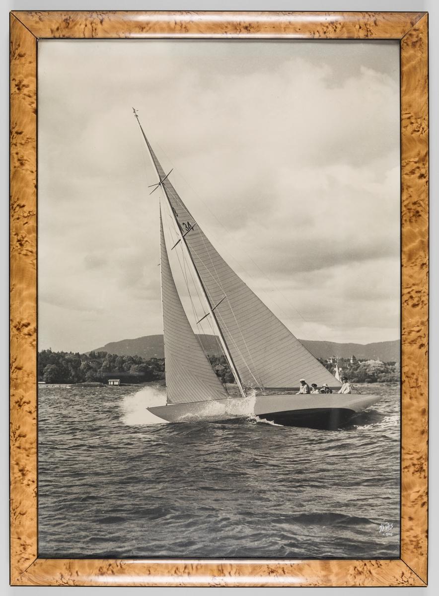 Fotografi av en 8 meter seilbåt som seiler på Oslofjorden. Bygdøy i bakgrunnen. Seilmerket klasse 8 N 34. Fotografi av Wilse 1946.