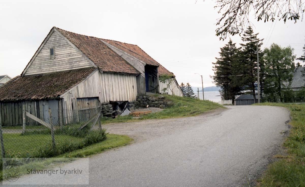 Austre Åmøy