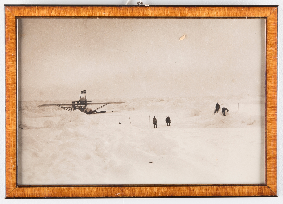 Fly i polardistrikt
