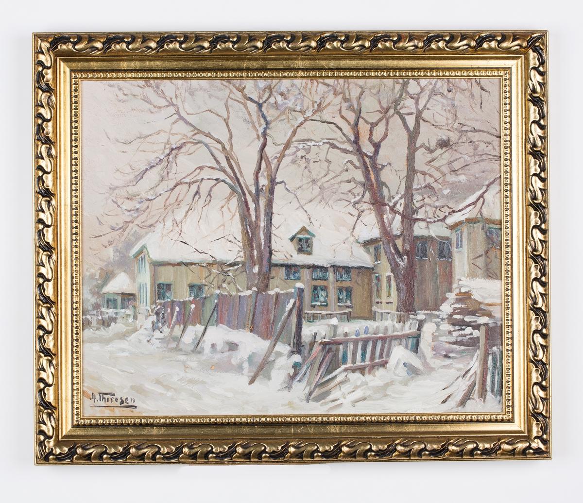 Hus i vinterdrakt