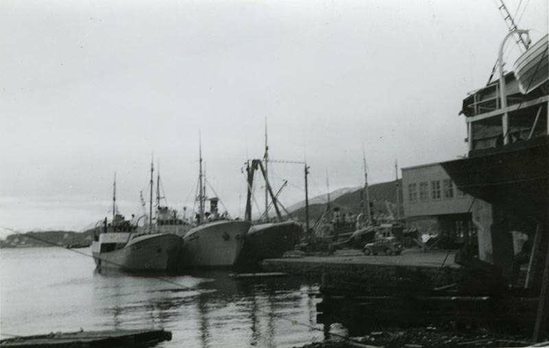 Fiskebåter ved kai