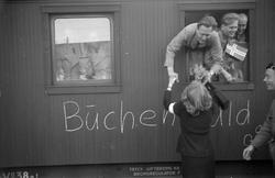 Studentenes hjemkomst fra fangenskap i Buchenwald.