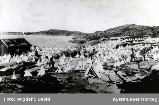 Klippfisktørk på Valøya