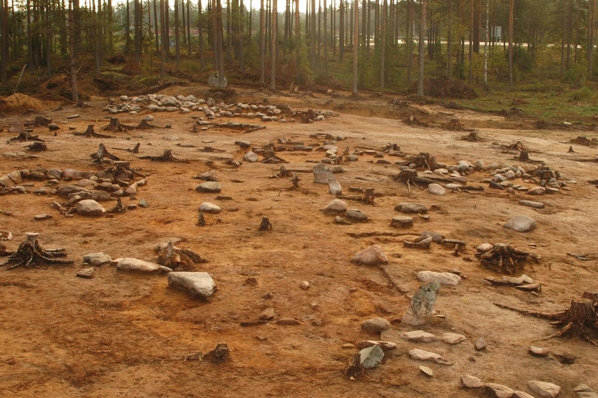 Vy från en arkeologisk undersökning av gravfältet RAÄ Barnarp 29:1, L1974:2724. Centralt i bilden finns anläggningen A10484, som benämndes som en hussättning, den bestod av sex par större stenar formerade som de bärande stolparna i ett långhus. Centralt i anläggningen låg en brandgrop som också kan symbolisera härden i huset. Under tre av stenarna påträffades också brandgravar.