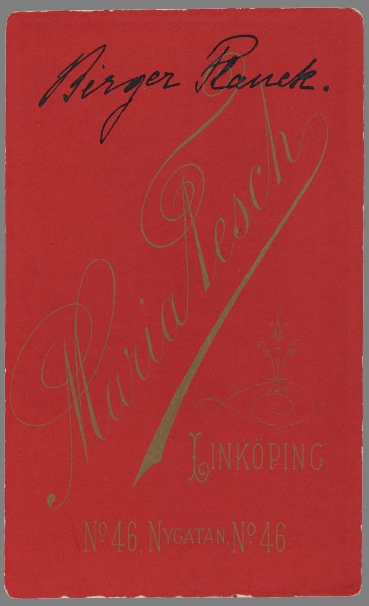 Bedårande porträtt av gossen Birger Planck. Född i Stockholm 1888 hade han följt sina föräldrar till Linköping 1890, där fadern erbjudits tjänst vid stadens läroverk. Familjen bodde kvar i Linköping till 1902 då de åter flyttade till Stockholm. I vuxen ålder kom han att arbeta som ingenjör vid Graversfors masugnar i Kvillinge.