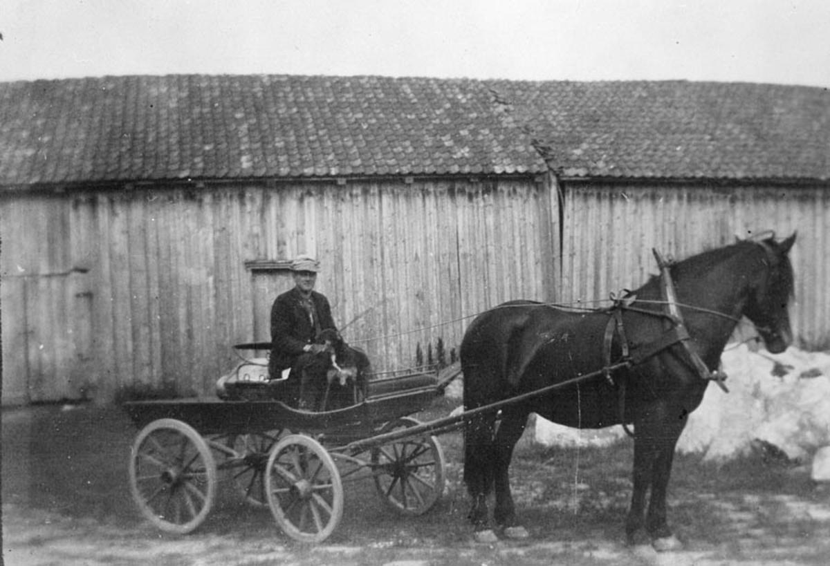 Ludvig Nordby med hest og vogn