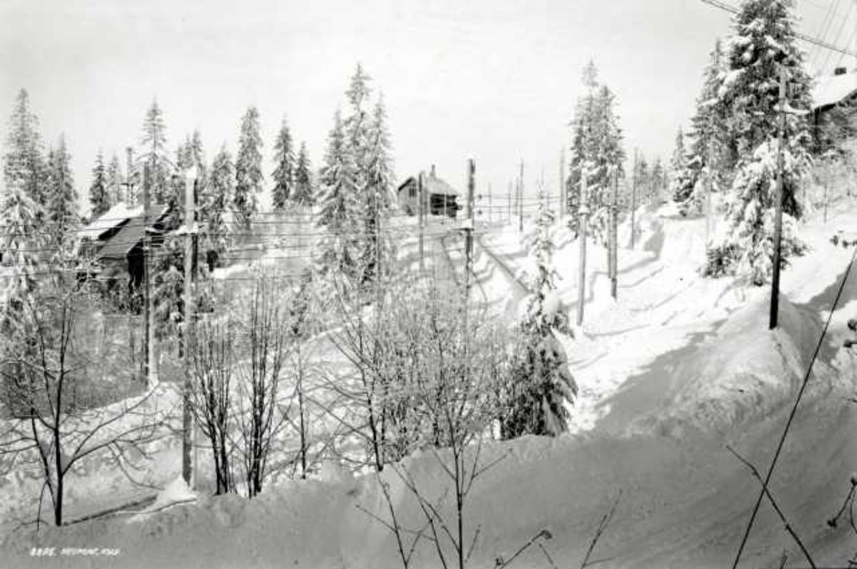 Holmenkollbanen, Nordmarka, Oslo. Vinterskog med hus og bane.