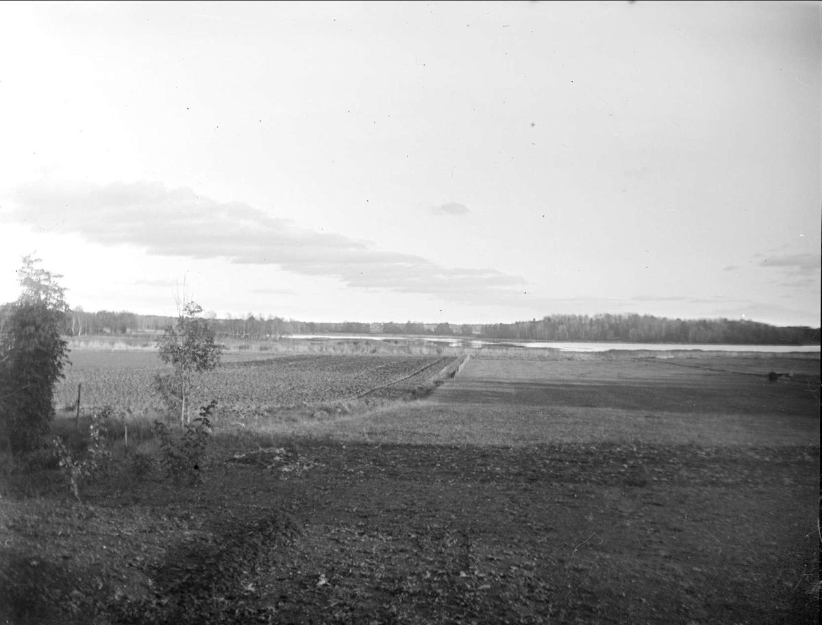 Fladen vid Morängen, Almunge socken, Uppland oktober 1934