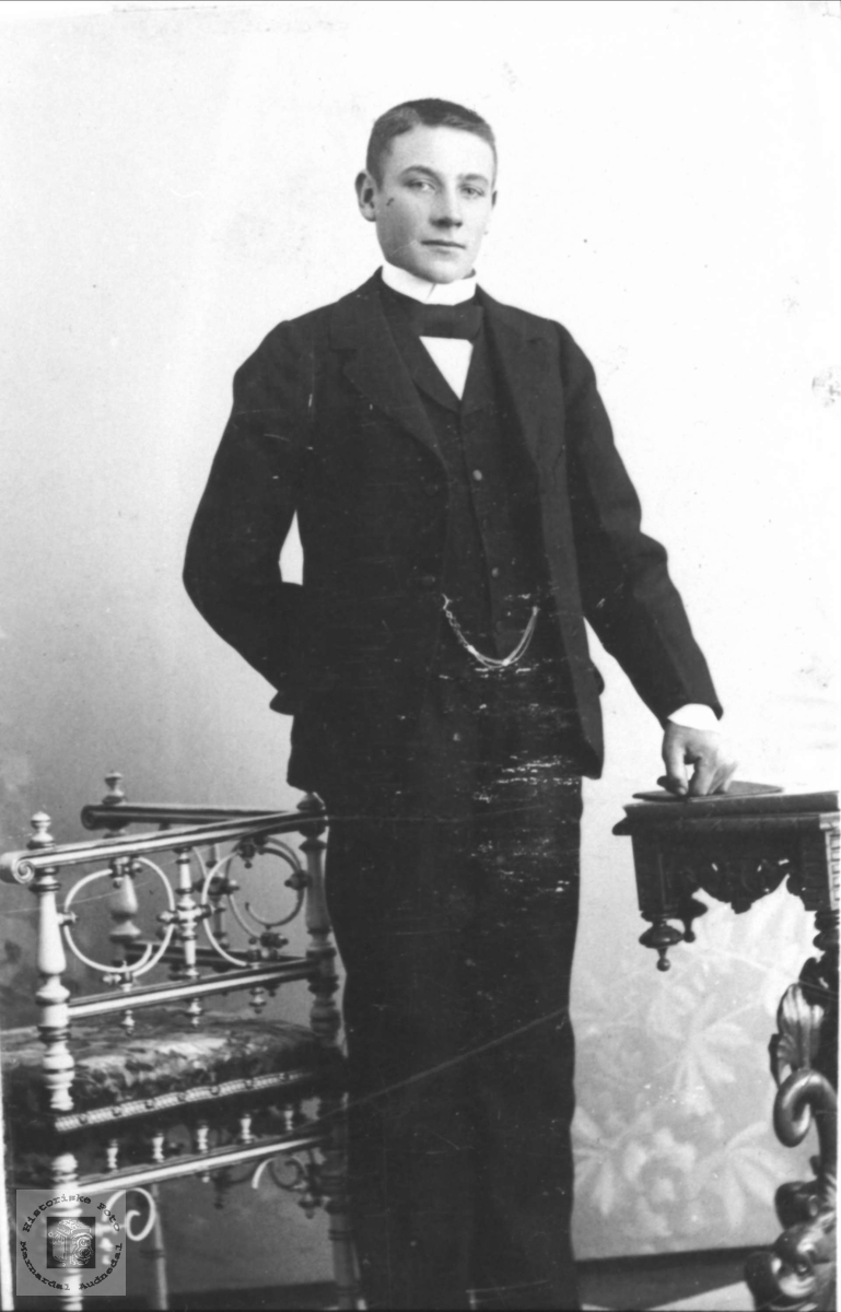 Portrett Olav Severin Teland, Øyslebø.