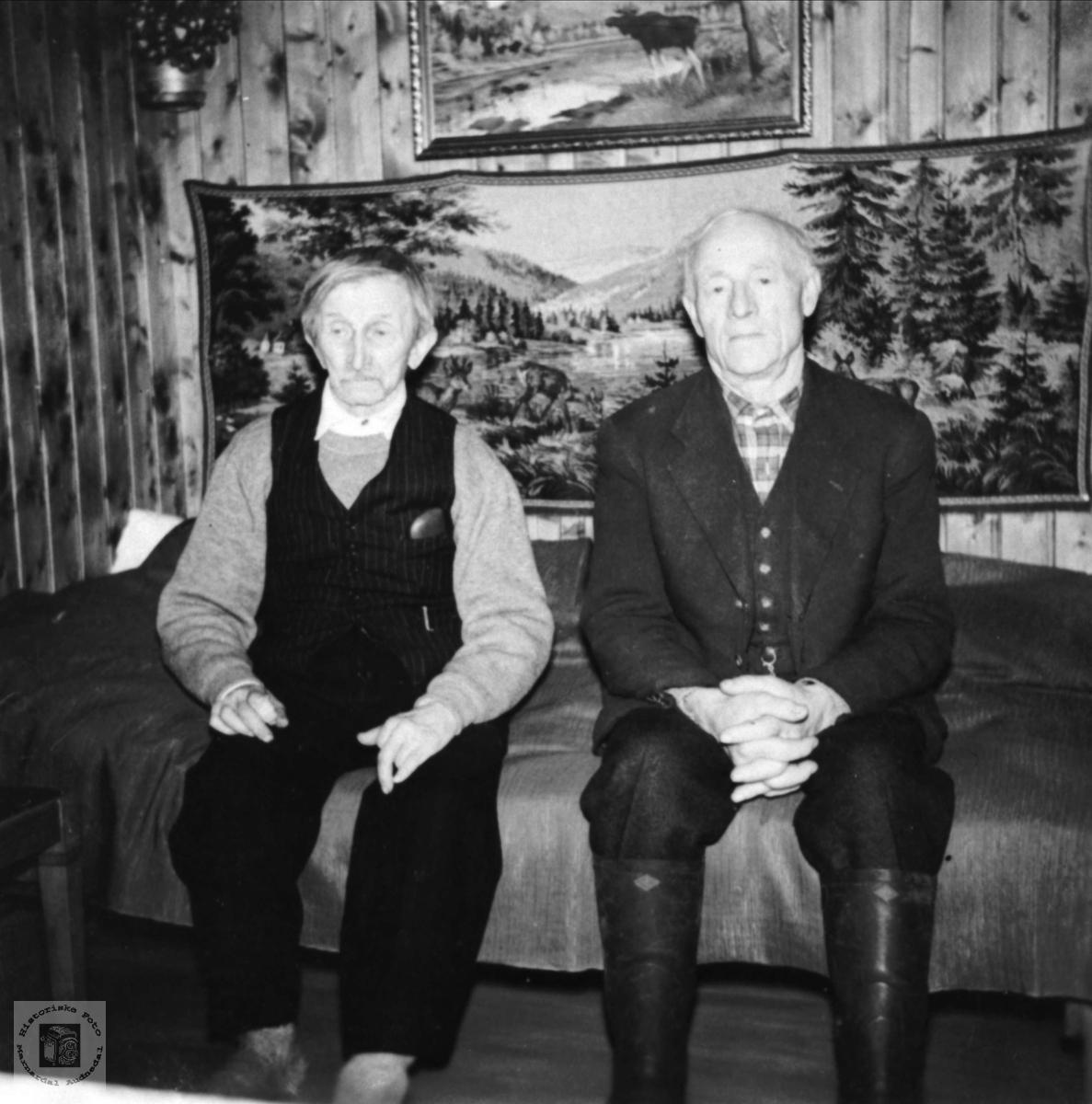 Slitets adel, Thyge og Andreas Breland, Øyslebø.