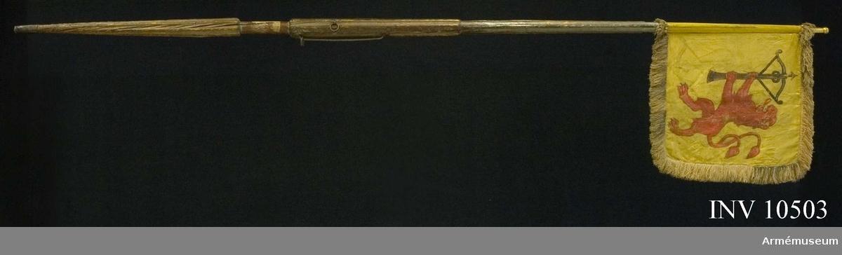 Grupp B I. Äldre nr -.   Duk av gul sidendamast kantad med silkesfrans. På vapensidan Smålands landskapsvapen, ett upprättstående rött lejon med ett uppåtvänt armborst i tassarna. På chiffersidan ses två motstående C omgivna av palmblad under kunglig krona. Duken är fäst på stången med mässingstennlikor. Holk av mässing. Spetsbladet saknas.