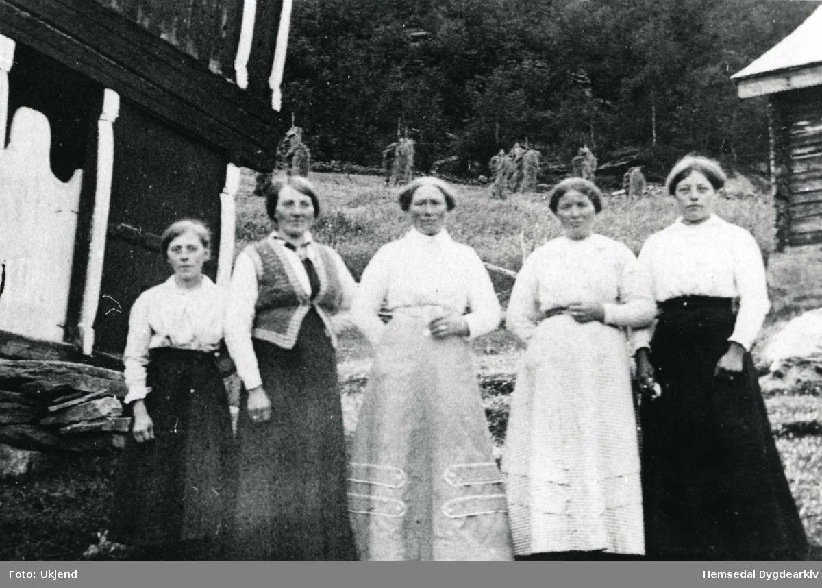 Unge jenter framfor loftet på Holde. Frå venstre: Mari Dokk, fødd 1886, gift Bodding; Kari Fekene, søre; Ingebjørg Møllerplass, fødd 1878; Guri Holde; Karoline Holde.