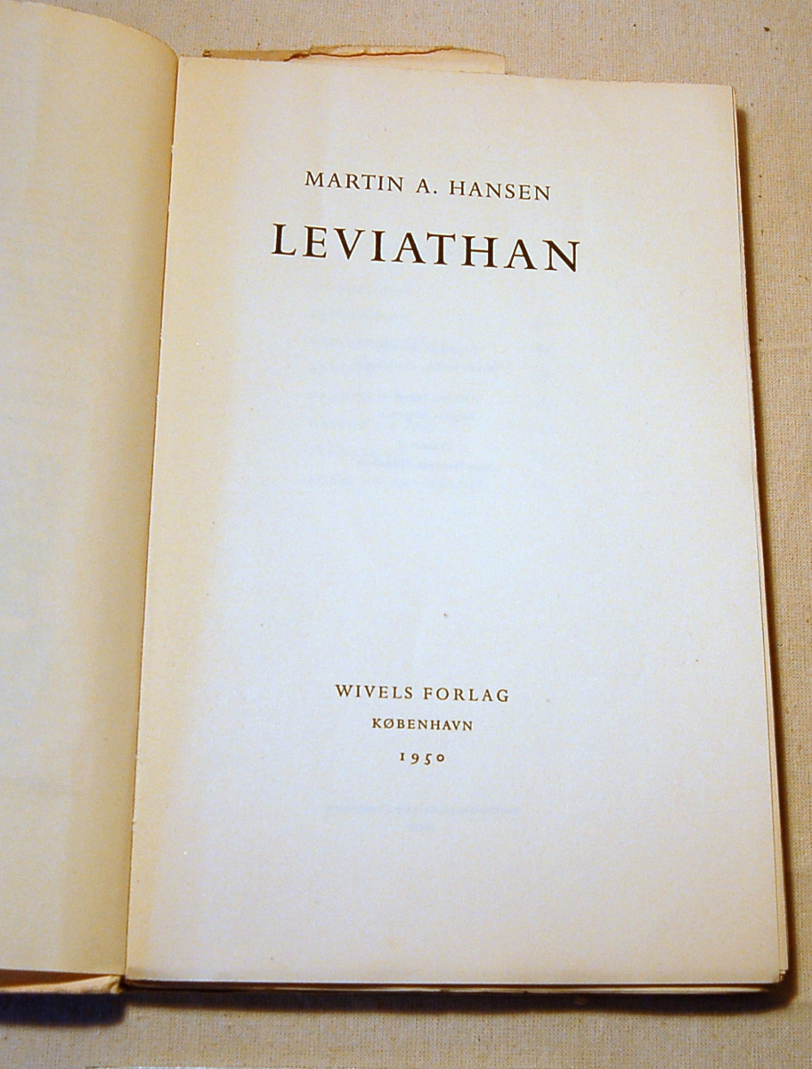 På bokens forside motiv med vikingmotiv