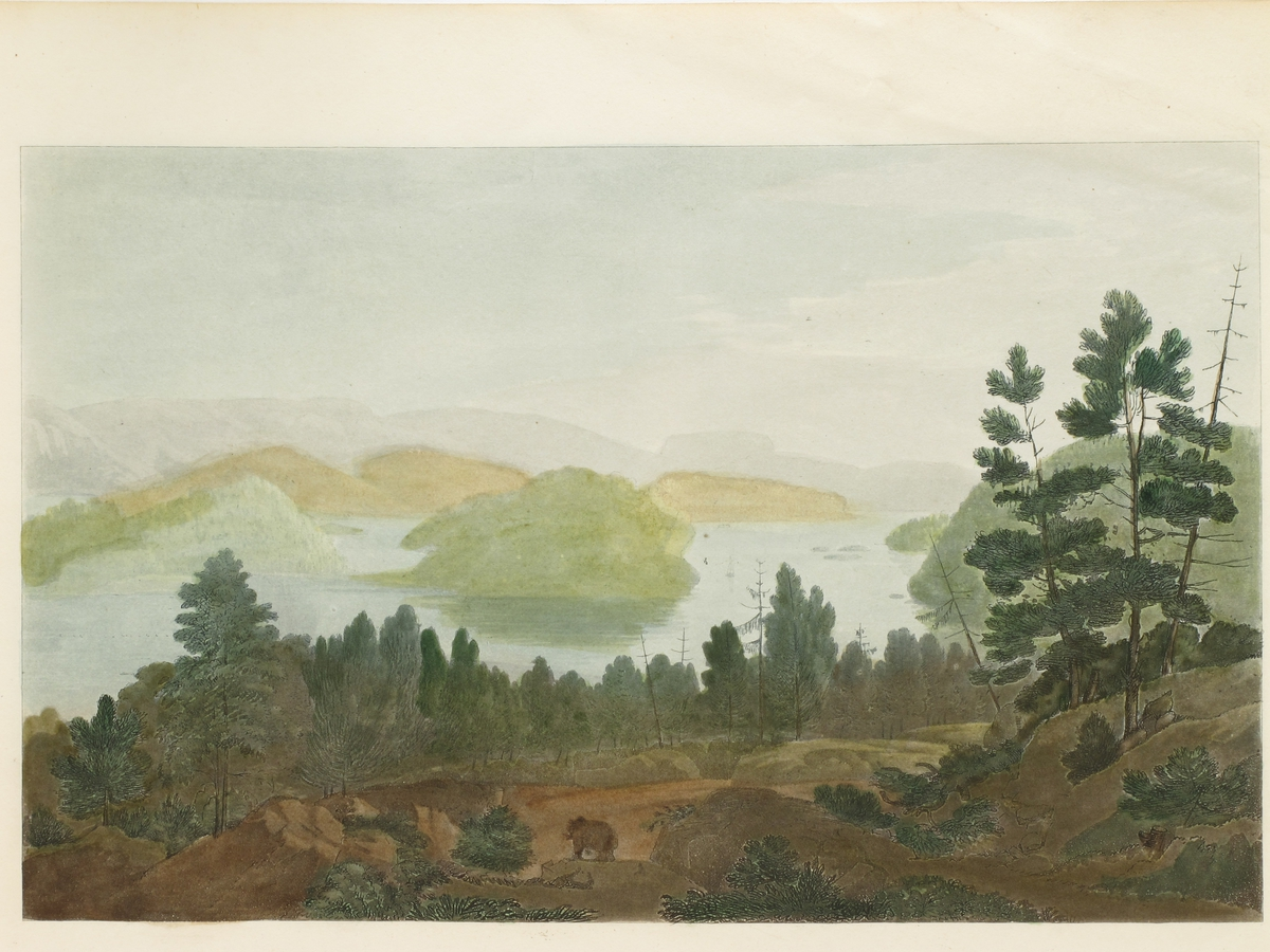Innsjøen Sinli ( i Grimstadtraktene).  I forgrunnen åsside m. bjørn på platå, i bakgrunnen ser man ned på et vann med skogkledde øyer, omgitt av blå fjell.