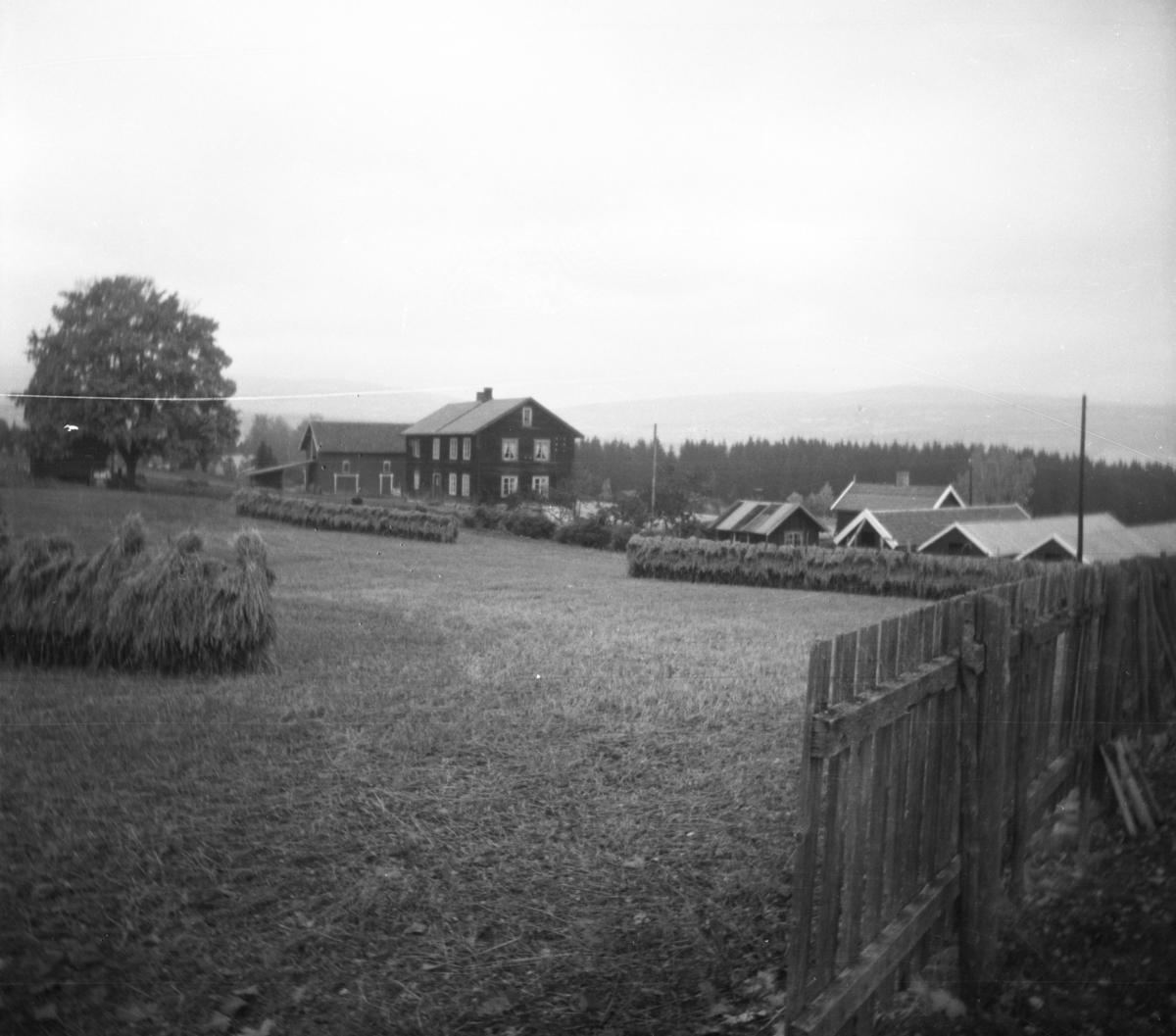 Ukjent, en gård